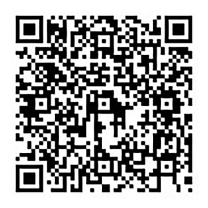 新潟ペイント youtube